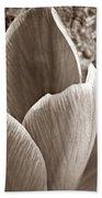 Crocus  Beach Towel