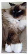 Crossed Paws Beach Towel