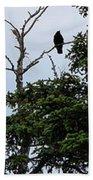 Crow - Black  Bird - Loud Call Beach Towel