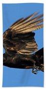 Crow In Flight Beach Towel