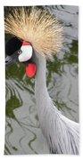 Crown Bird 1 Beach Towel