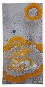 Crustose Lichen, Utah Beach Towel