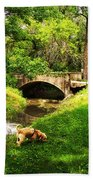 Cruz At Deer Creek Bridge Dwight Il Beach Towel