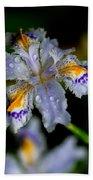Crying Fringed Iris-iris Japonica Beach Towel