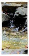 Crystal Clear Waters Of Hurricane Branch Beach Towel