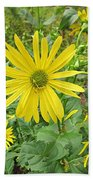 Cup Plant Blooms Beach Towel