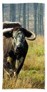 Curious Cow Beach Towel