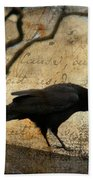 Curious Crow Beach Towel
