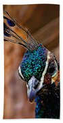 Curious Peacock Digital Art Beach Towel