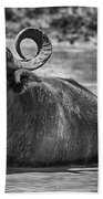 Curly Horns-black And White Beach Towel