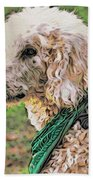 Curly White Dog Beach Towel