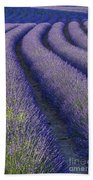 Curved Rows Beach Towel