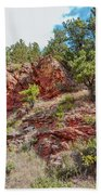 Custer State Park Ecology Beach Towel