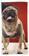 Cute Pug Dog In Vest And Top Hat Beach Towel