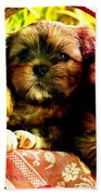Cute Terrier Puppies Beach Towel by Marvin Blaine