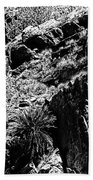 Cycads At Cliffs' Edge Black And White Beach Towel