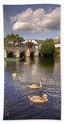 Cygnets At Christchurch  Beach Towel