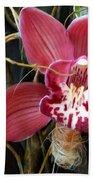 Cymbidium Flower Beach Towel