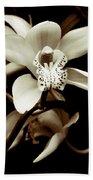 Cymbidium Orchids Beach Towel