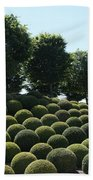 Cypress And Boxwood Garden Beach Towel