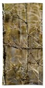 Cypress Branches Beach Towel