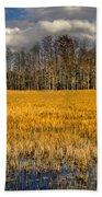 Cypress Marsh Beach Towel