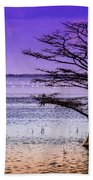 Cypress Purple Sky 2 Beach Towel