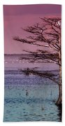 Cypress Purple Sky Beach Towel