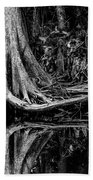 Cypress Roots - Bw Beach Towel