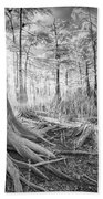 Cypress Roots In Big Cypress Beach Towel