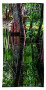 Cypress Secrets Beach Towel