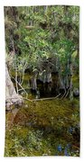 Cypress Trees 4021 Beach Towel