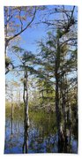 Cypress Swamp Beach Towel by Rudy Umans