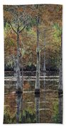 Cypress Tree Fall Reflections Beach Towel