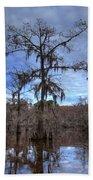 Cypress Tree Beach Towel