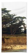 Cypress Trees On 17 Mile Drive Beach Towel