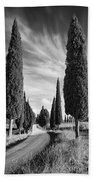 Cypress Trees - Tuscany Beach Towel