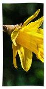Daffodil - Impressions Beach Towel