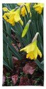 Daffodils In The Rain  Beach Towel