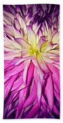 Dahlia Bursting With Color Beach Towel