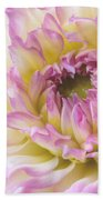 Dahlia Delight Square  Beach Towel
