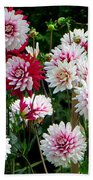 Dahlia Love Beach Towel