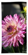 Dahlia Generations Beach Towel