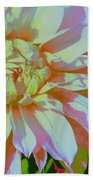 Dahlia In Pink And White Beach Towel