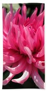 Dahlia Named Pretty In Pink Beach Towel