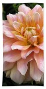 Dahlia Named Seattle Beach Towel