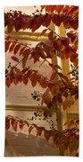 Dainty Branches - Warm Autumn Colors - Washington D C Facades Beach Towel