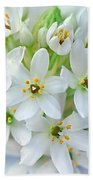 Dainty Spring Blossoms Beach Towel