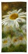 Daisies ... Again - P11at01 Beach Towel