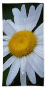 Daisy 14-3 Beach Towel